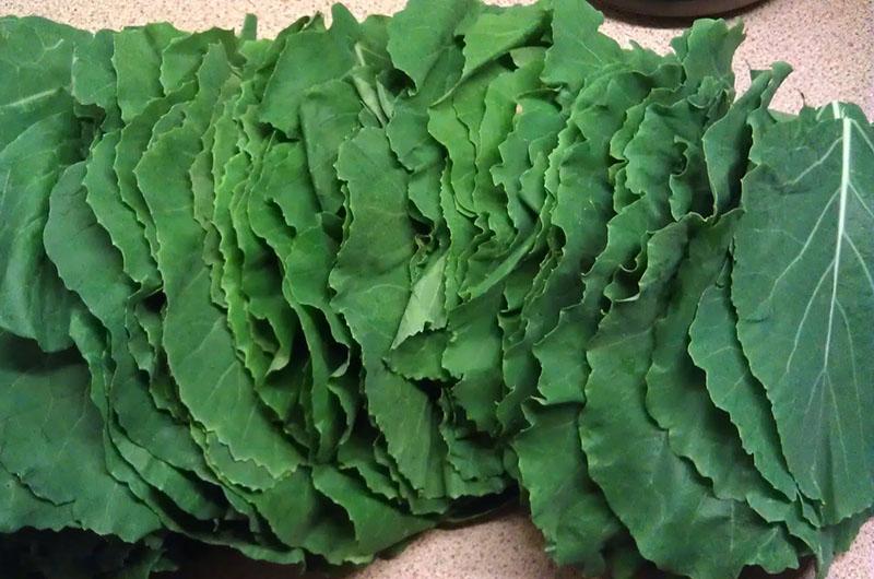 kara-lahana-sebzesi